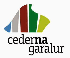 logo cederna VERT 4x4 tr